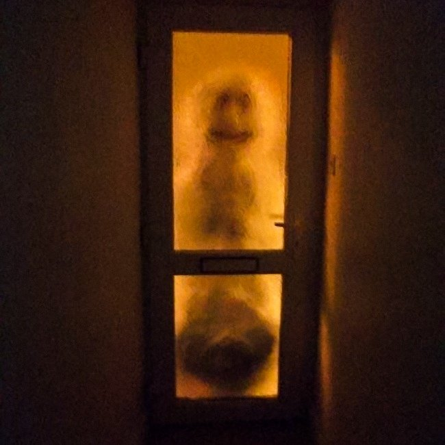 creepy-snowman-at-the-door-to-scare-early-riser-roommate-pranks