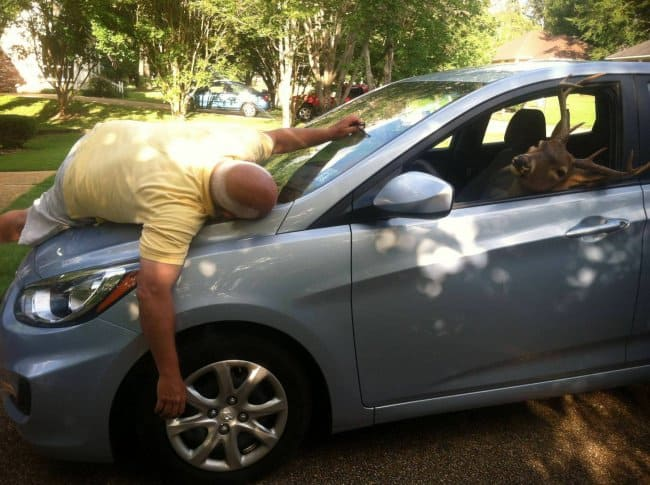 deer-on-a-car-hits-dad-humor-makes-happy-family