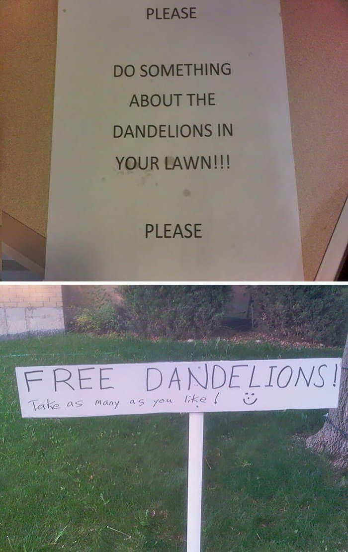 do-something-about-the-dandelions-hilarious-neighbor-notes
