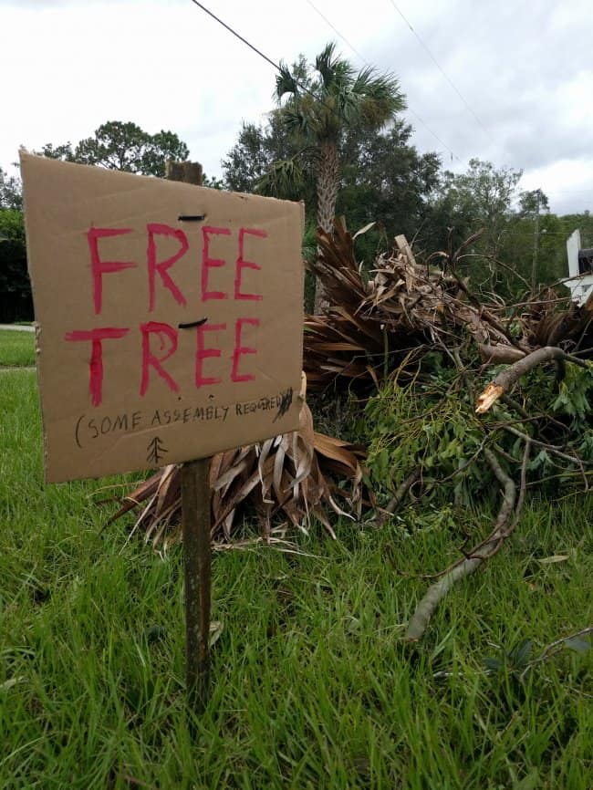 free-tree-some-assembly-required