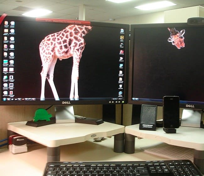 giraffe-split-dual-screen-clever-desktop-wallpapers