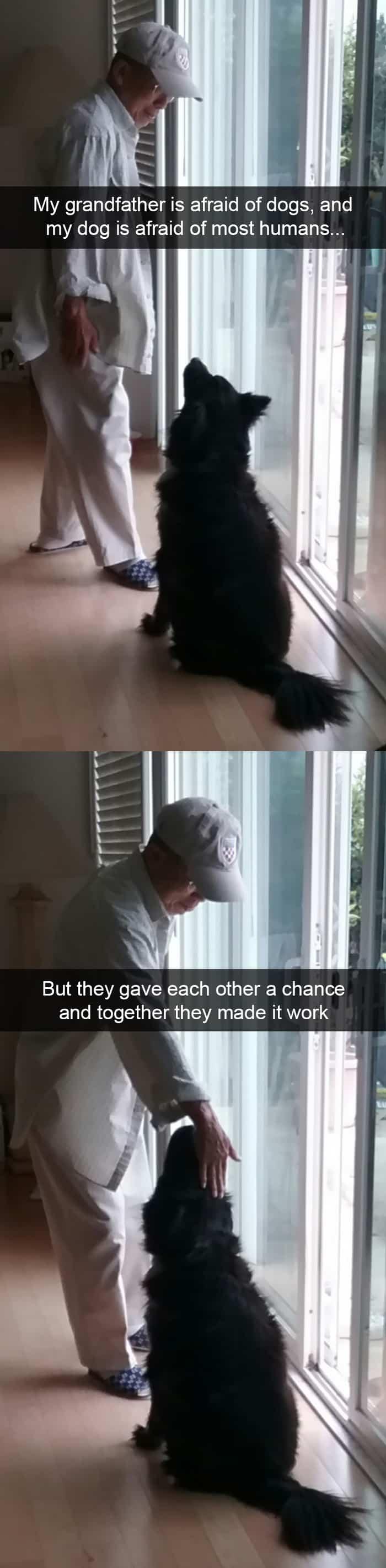 grandfather-is-afraid-of-dog-adorable-dog-snapchats