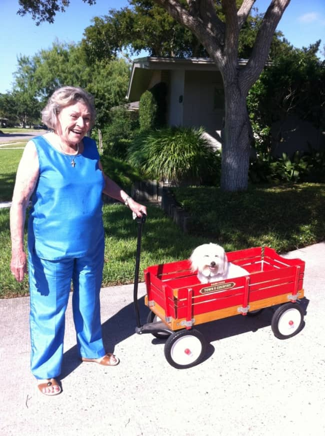 grandma-walking-the-dog-humor-makes-happy-family