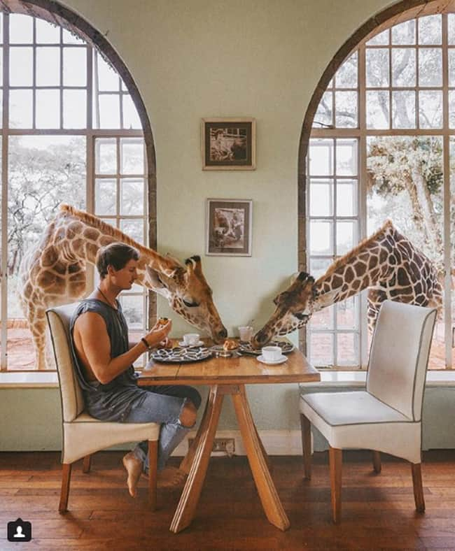 guy-shares-breakfast-with-giraffe-in-kenya-heartwarming-photos