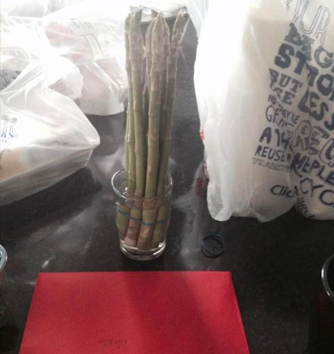 husband-bought-asparagus-for-wife-mistaken-for-daffodils-funny-romantic-gestures