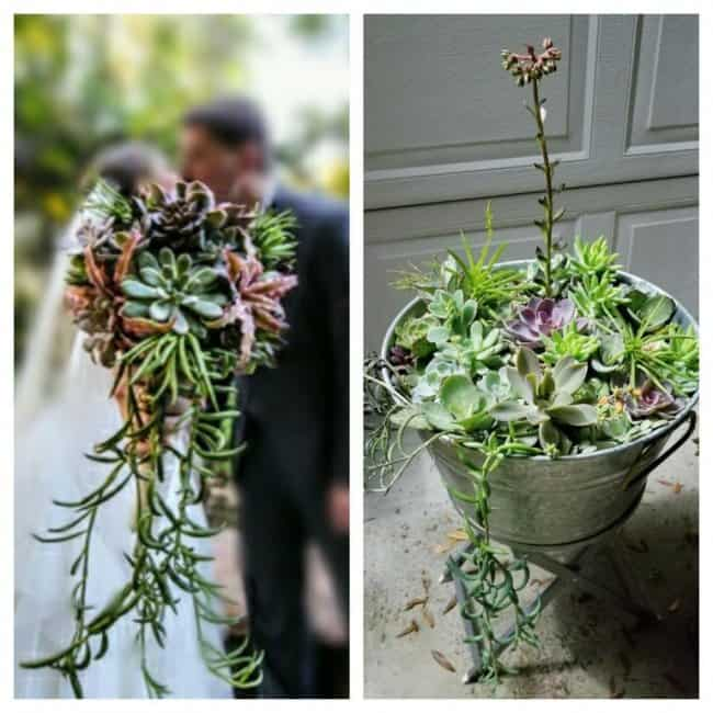 planted-wedding-bouquet