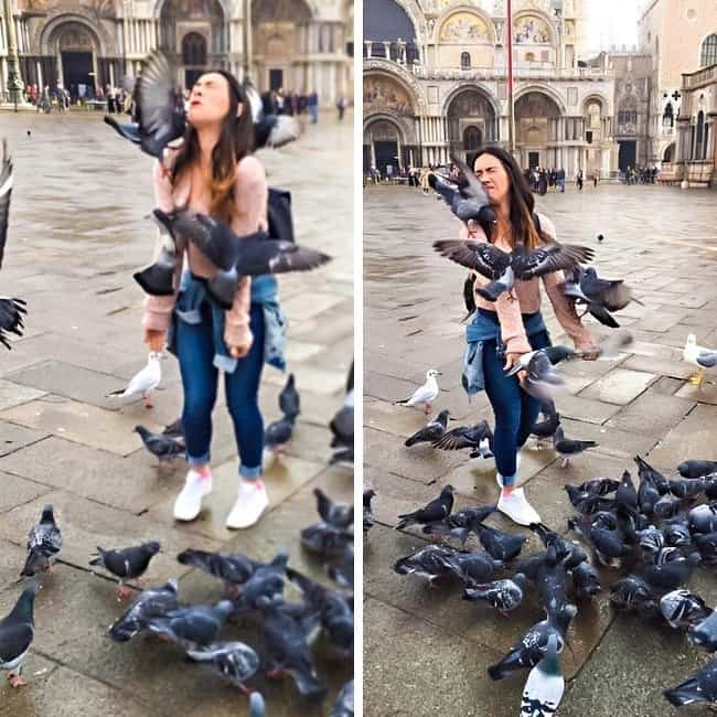 selfie-with-birds-gone-wrong-crazy-ways-to-get-a-perfect-photo