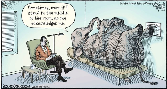 the-elephant-in-the-room-hilarious-therapy-sessions