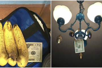 this-sneaky-dad-hides-money-in-his-daughters-house-after-every-visit