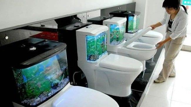 toilet-with-aquarium