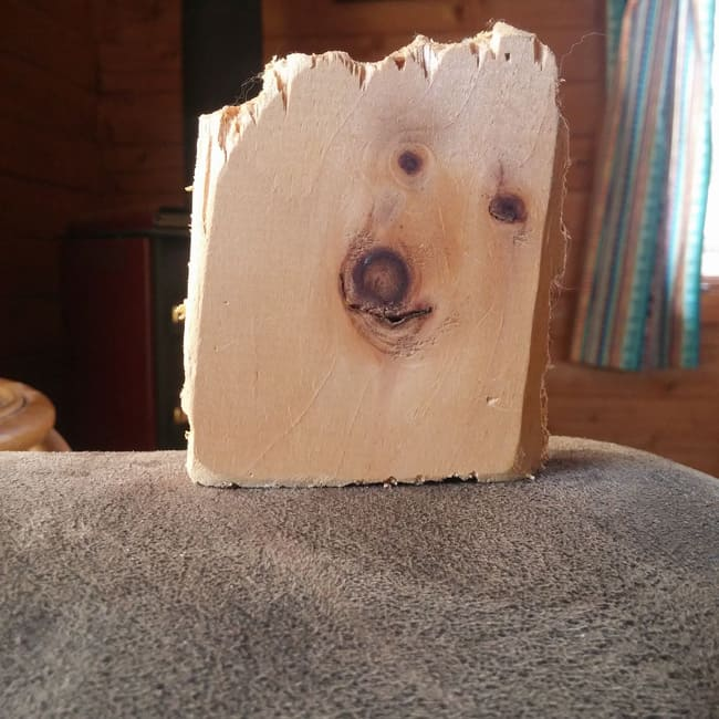 wood-plank-looks-like-dog-how-whimsical-people-see-things