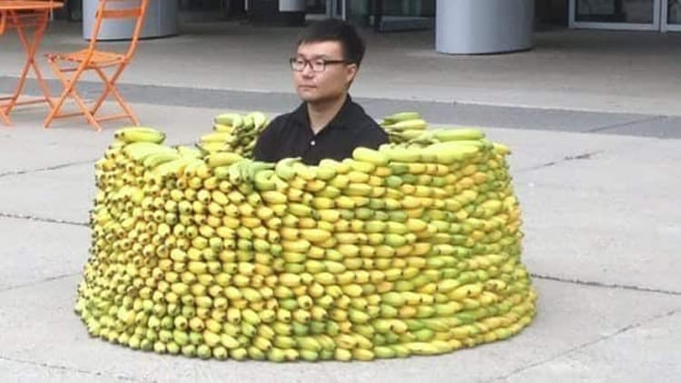 banana-fort-nonsensical-photos