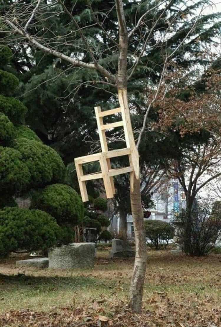 chair-trunk-tree-crazy-mysteries