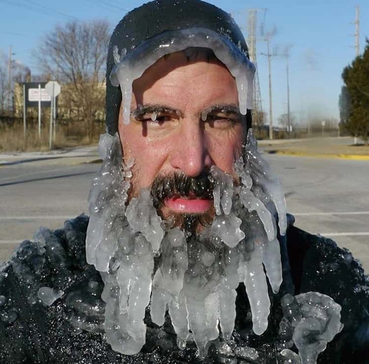 frozen-beard-hilariously-weird-things