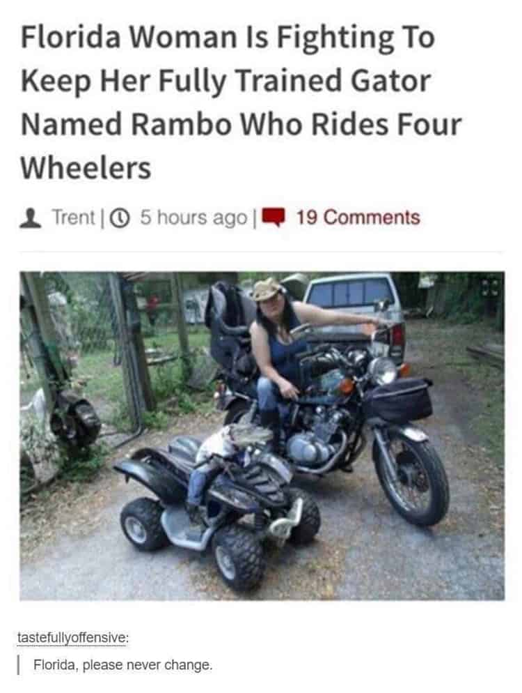 fully-trained-gator-to-drive-four-wheels-attention-grabbers