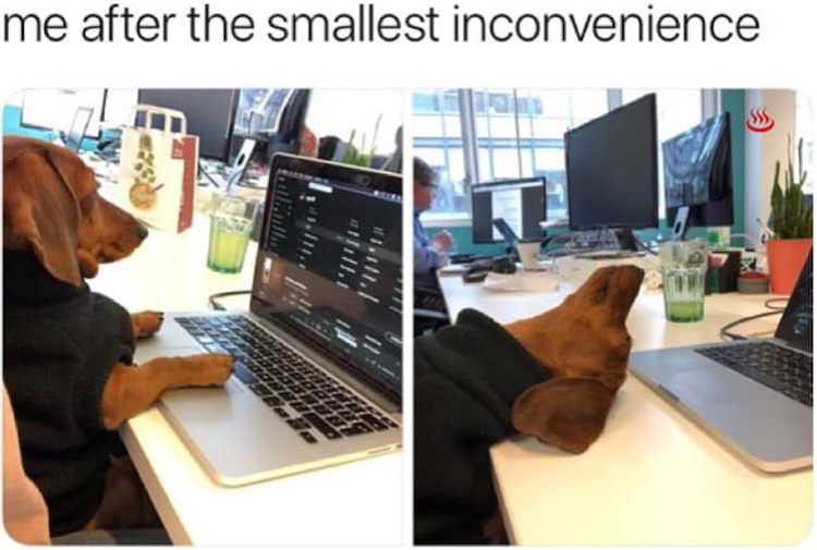 smallest-inconvenience-crazy-mysteries