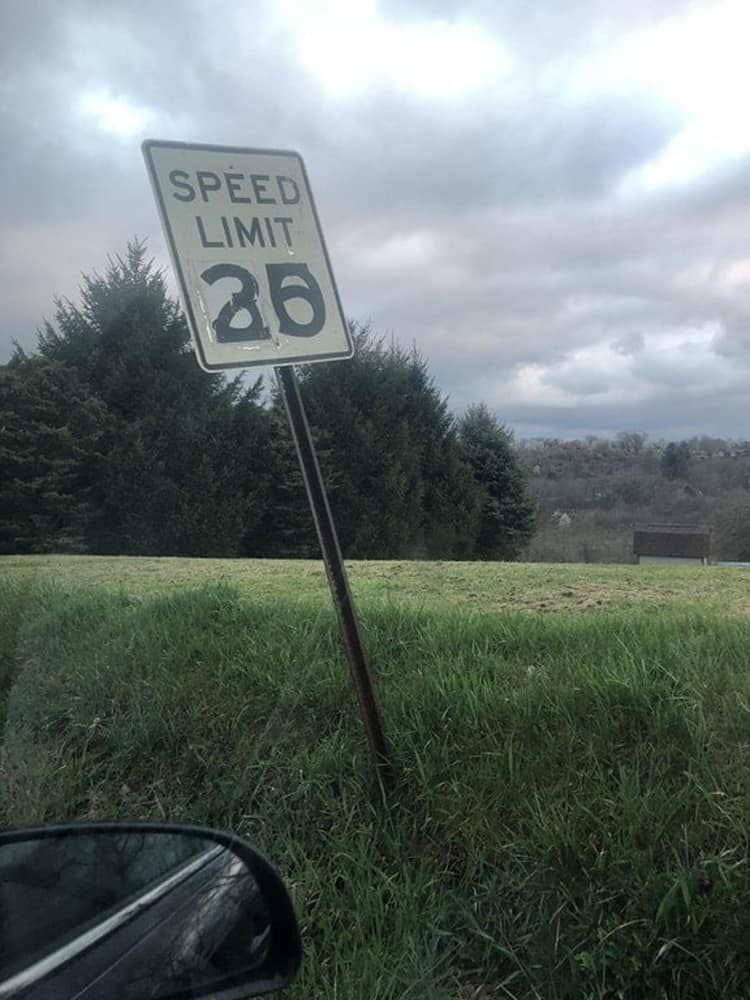 speed-limit-confusing-regrettable-photos