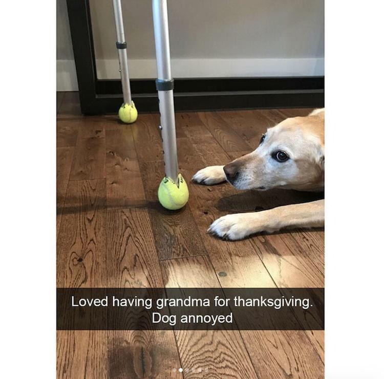 tennis-balls-table-support-funny-random-pics