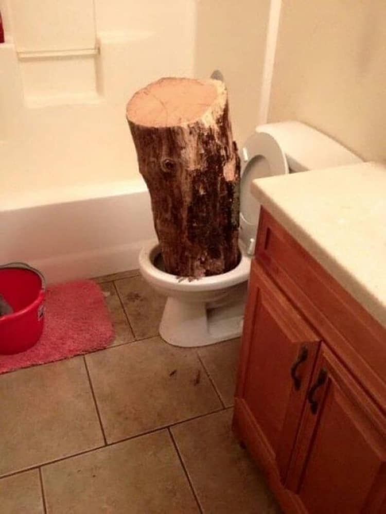 tree-trunk-in-the-toilet-hilarious-side-of-internet