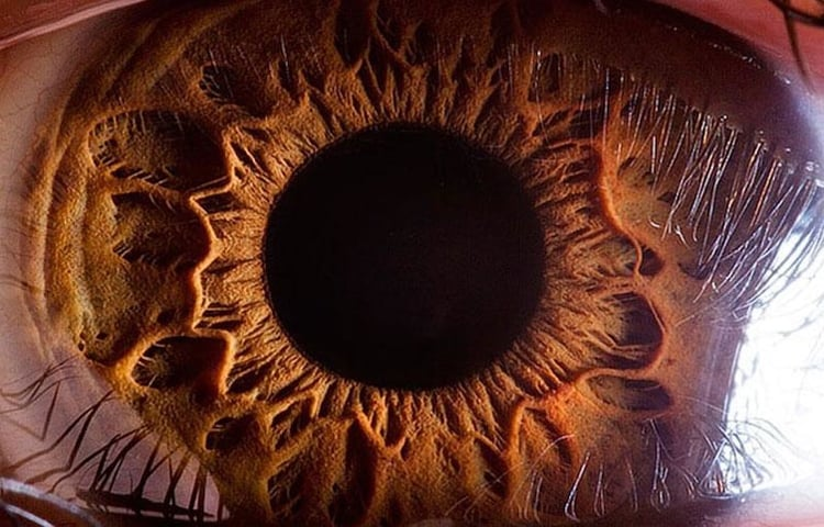 zoomed-in-shot-of-an-eyeball-psychedelic-images