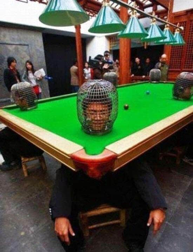 billiard-head-obstacles-insane-photos