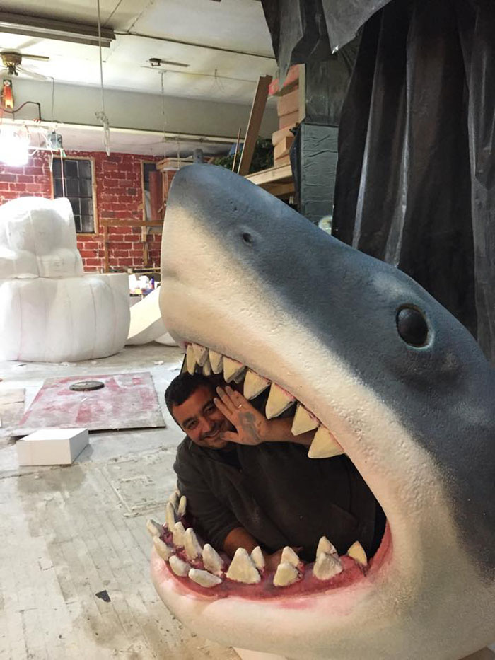 making the shark bed