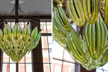 algae leaf Chandelier