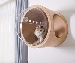 floating pet bed