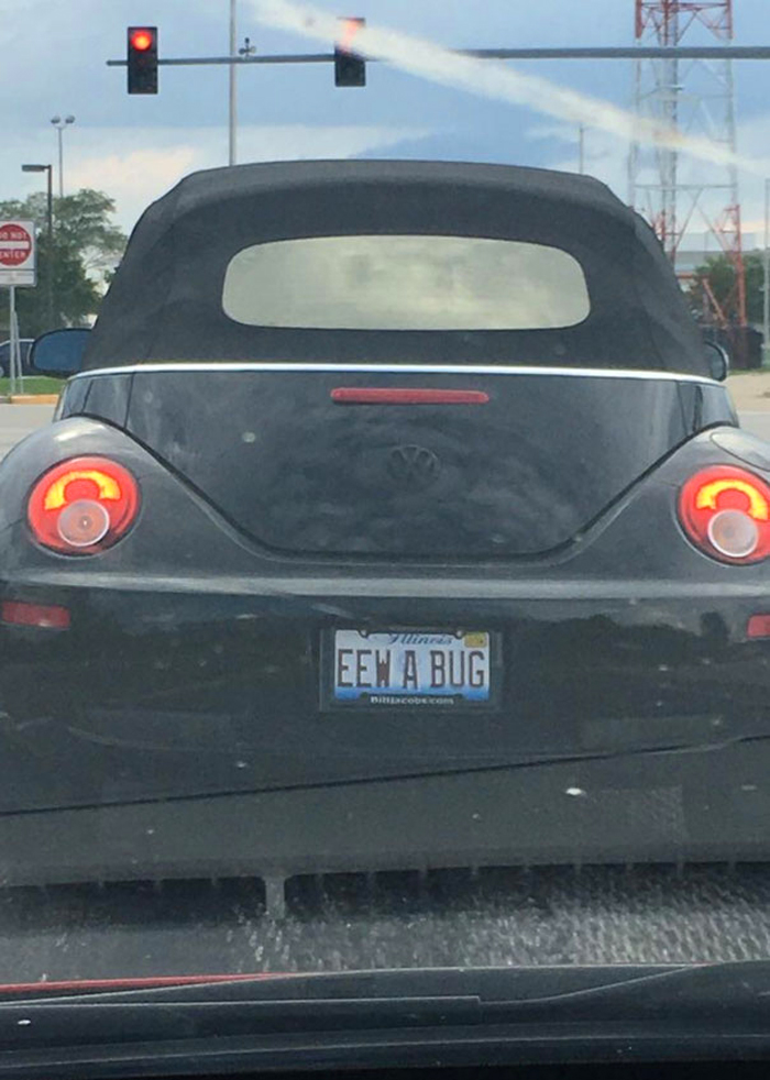 funny license plates eew bug