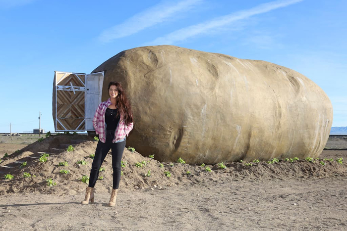 giant potato airbnb for rent
