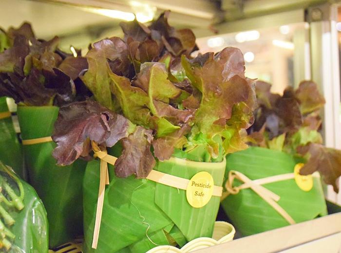 leaf packaging