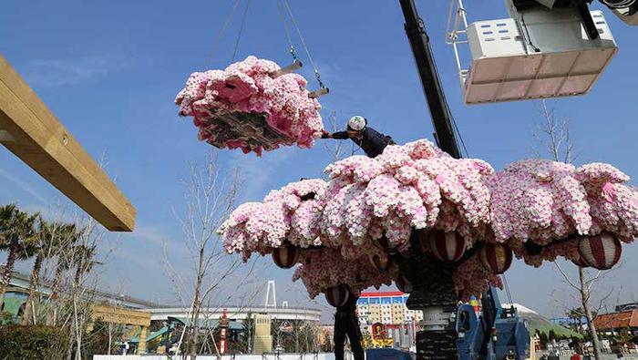 lego brick cherry blossom assembly