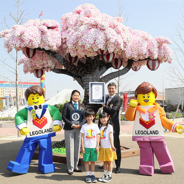 legoland japan cherry blossom tree
