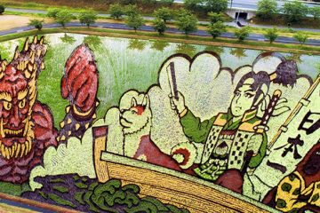 rice paddy art momotaro