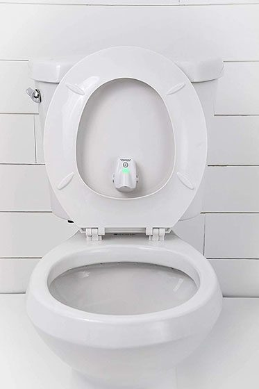 toilet aim assists