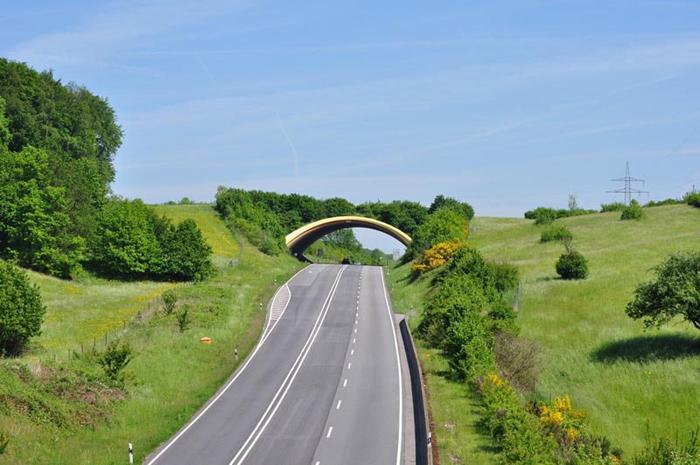 animal bridges germany