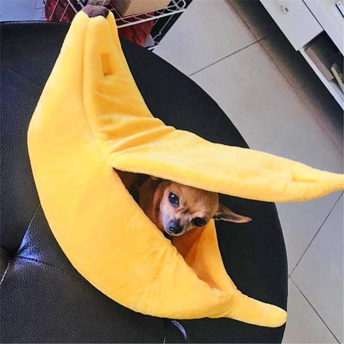 banana cat bed small dog