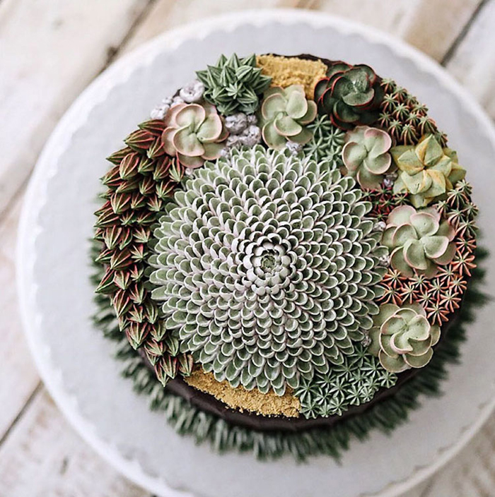 cakes that look like real succulents