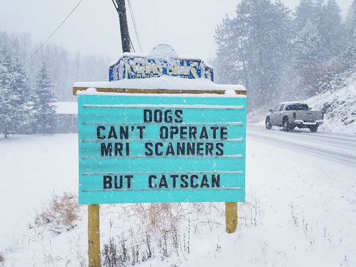 catscan funny road signs
