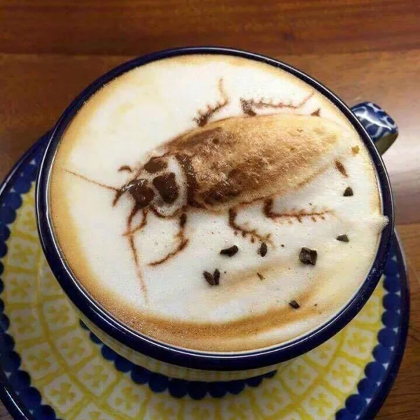 cockroach cappuccino