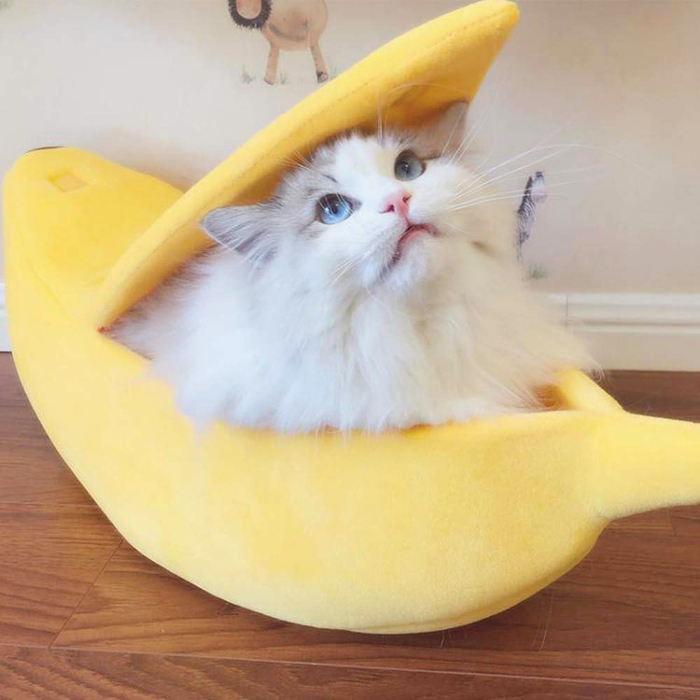 comfortable banana cat bed