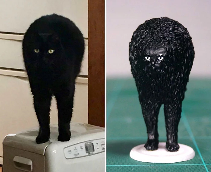 hilarious animal meme sculptures black cat