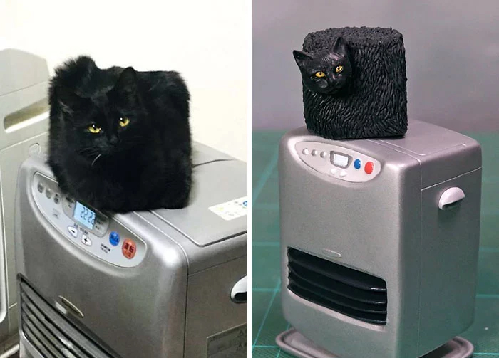 hilarious animal meme sculptures black cube cat