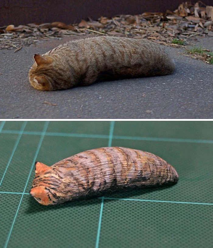 hilarious animal meme sculptures cat loaf