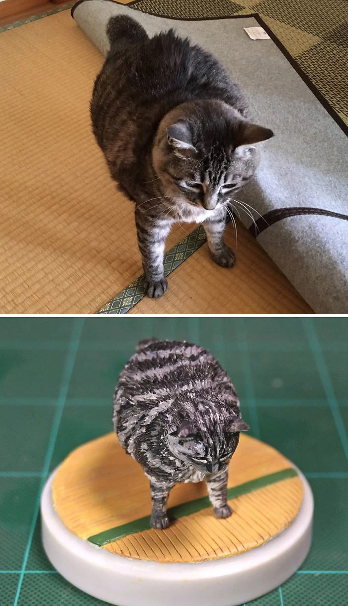 hilarious animal meme sculptures cat round body