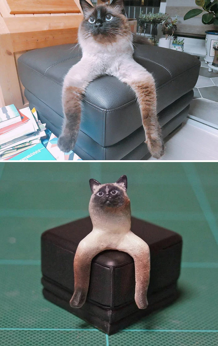hilarious animal meme sculptures confusing cat