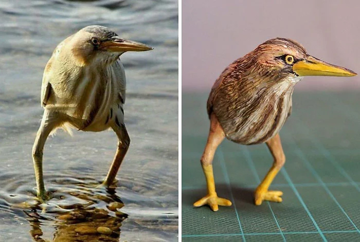 hilarious animal meme sculptures seabird legs