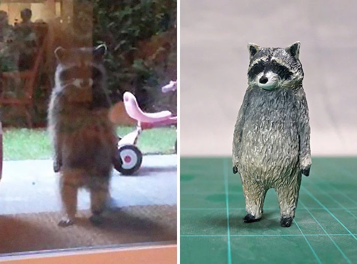hilarious animal meme sculptures standing racoon