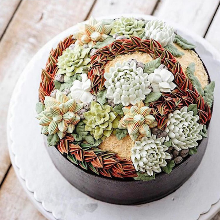 ivenoven new succulent cakes