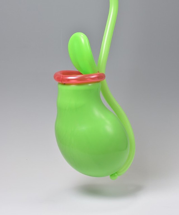 matsumoto colorful twisted balloon sculptures pitcher plant